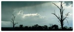 StormCroppedVER2